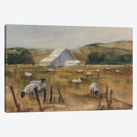 Grazing Sheep I Canvas Print #EHA119} by Ethan Harper Canvas Art