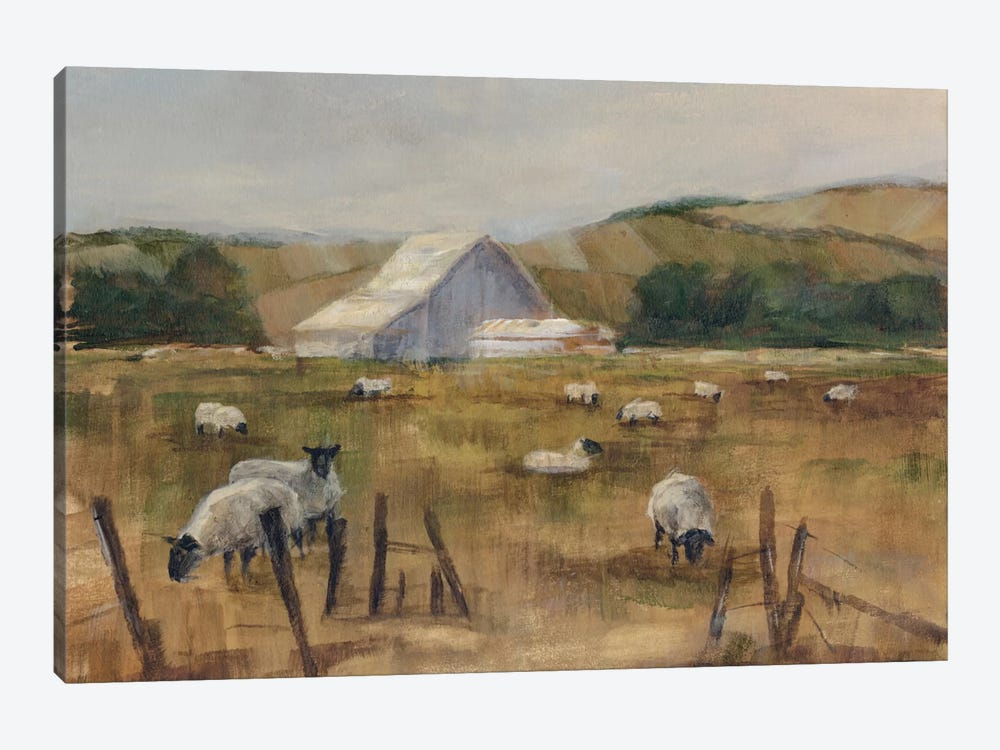 Grazing Sheep I 1-piece Canvas Art