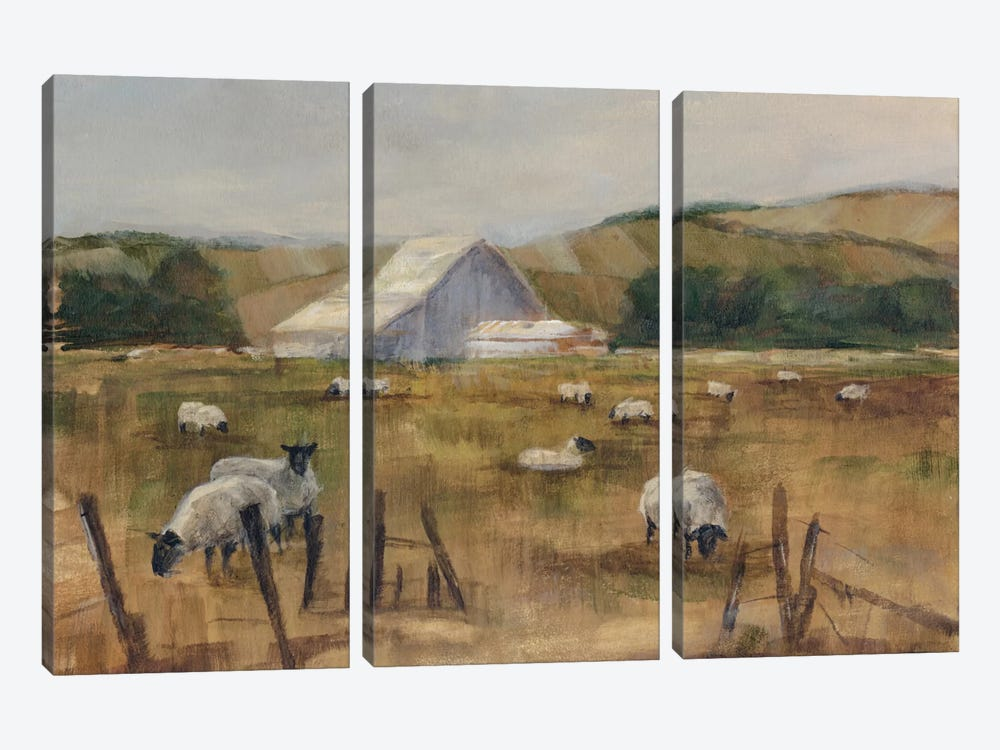 Grazing Sheep I 3-piece Canvas Artwork