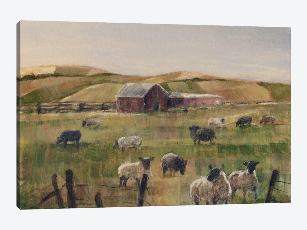 Grazing Sheep II by Ethan Harper 1-piece Canvas Art
