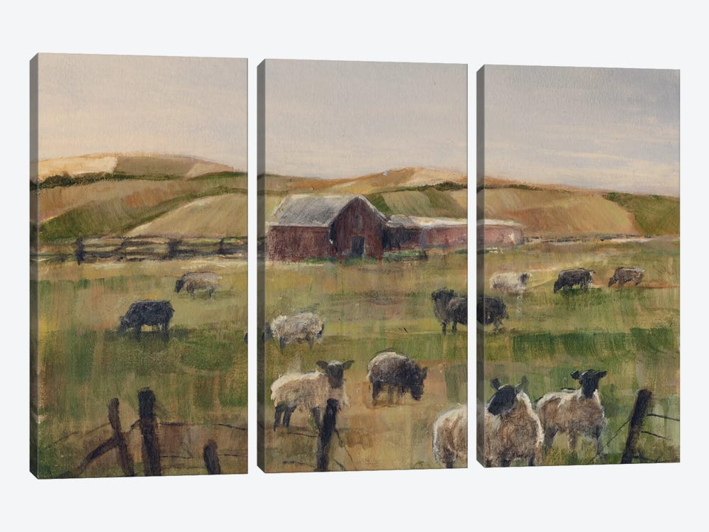 Grazing Sheep II by Ethan Harper 3-piece Canvas Art
