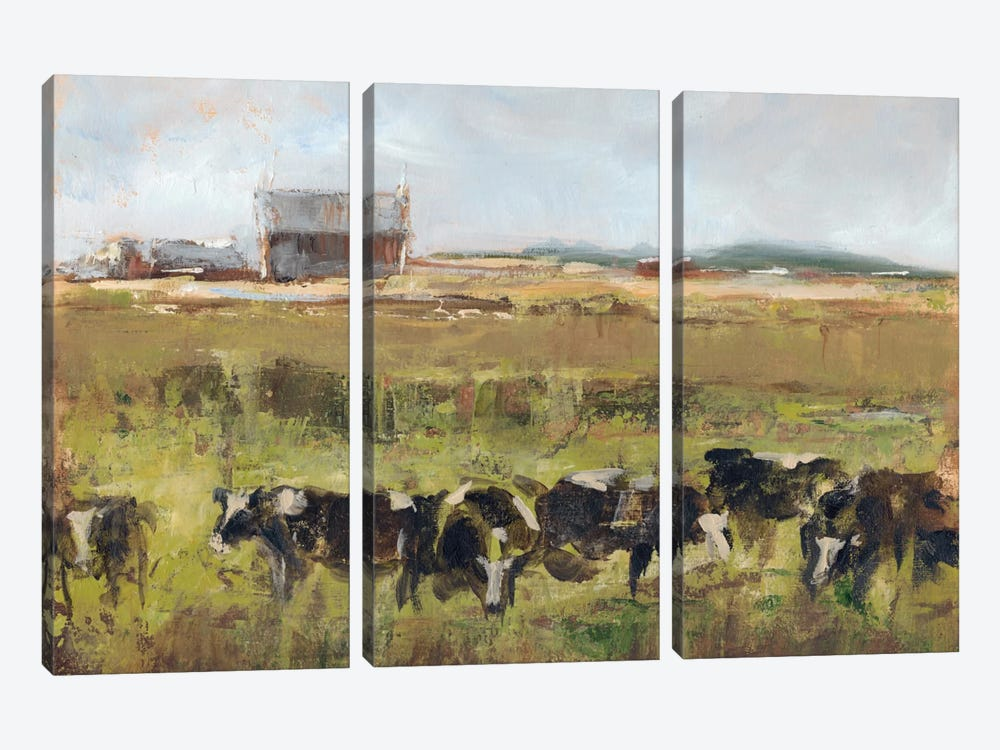 Out To Pasture I by Ethan Harper 3-piece Canvas Wall Art