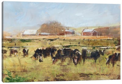 Out To Pasture II Canvas Art Print