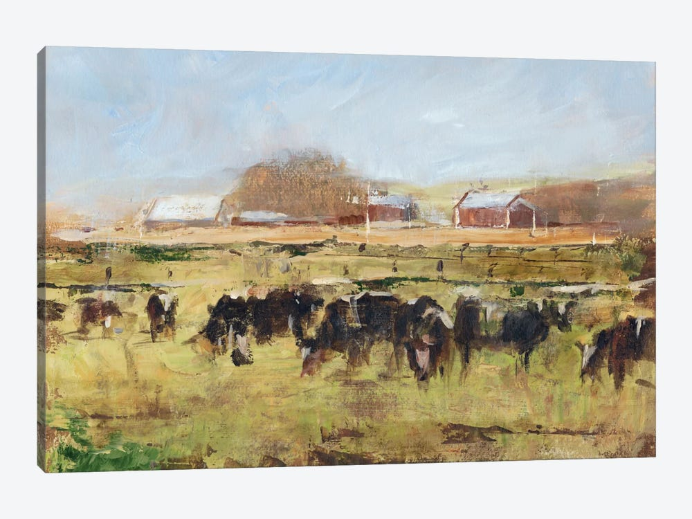 Out To Pasture II by Ethan Harper 1-piece Canvas Art Print