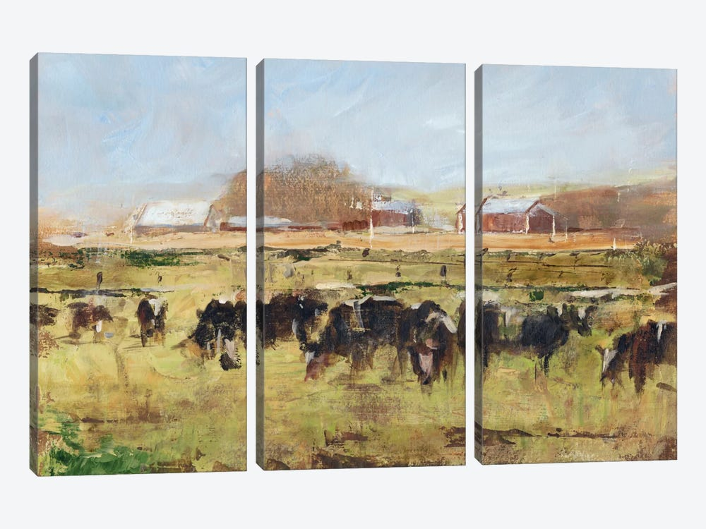 Out To Pasture II by Ethan Harper 3-piece Canvas Print
