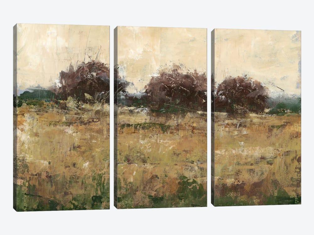 Plum Foliage II by Ethan Harper 3-piece Canvas Print