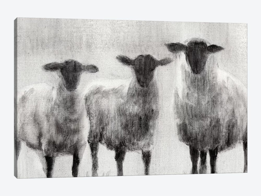 Rustic Sheep I by Ethan Harper 1-piece Canvas Print