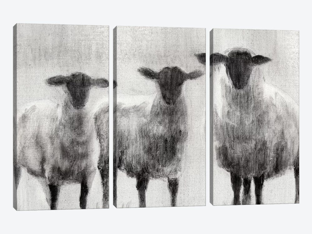 Rustic Sheep I by Ethan Harper 3-piece Art Print