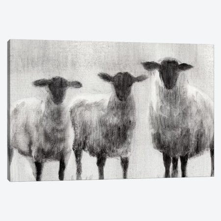 Rustic Sheep I 3-Piece Canvas #EHA134} by Ethan Harper Canvas Art Print