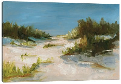 Summer Dunes I Canvas Art Print