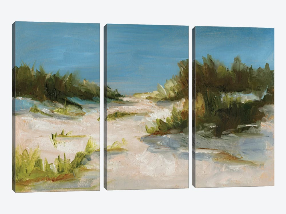 Summer Dunes I by Ethan Harper 3-piece Canvas Art