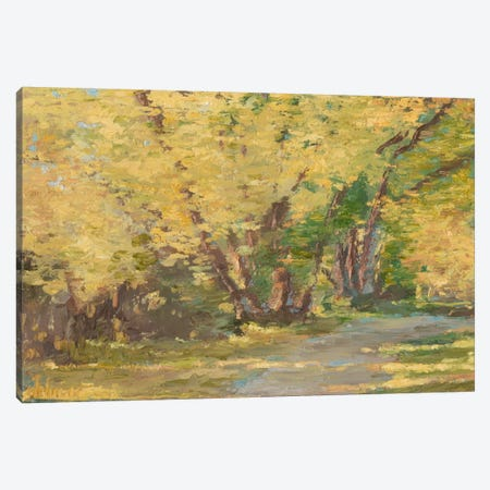 Fall Path I Canvas Print #EHA165} by Ethan Harper Canvas Artwork