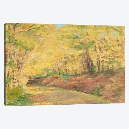 Fall Path II Canvas Print #EHA166} by Ethan Harper Canvas Art