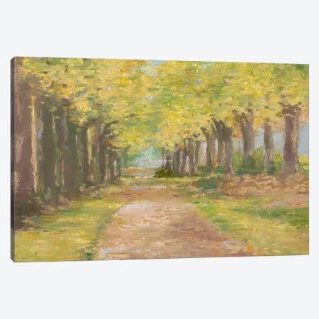 Fall Path III Canvas Print #EHA167} by Ethan Harper Canvas Wall Art