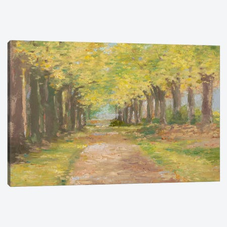 Fall Path III Canvas Print #EHA167} by Ethan Harper Canvas Wall Art