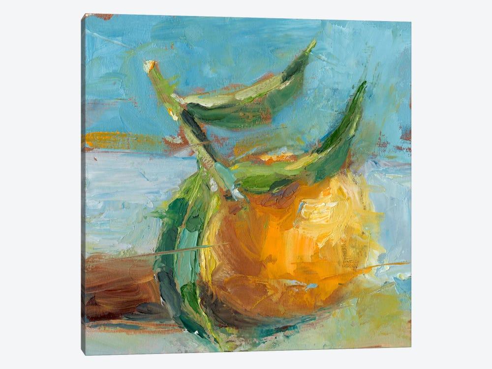 Impressionist Fruit Study III by Ethan Harper 1-piece Art Print