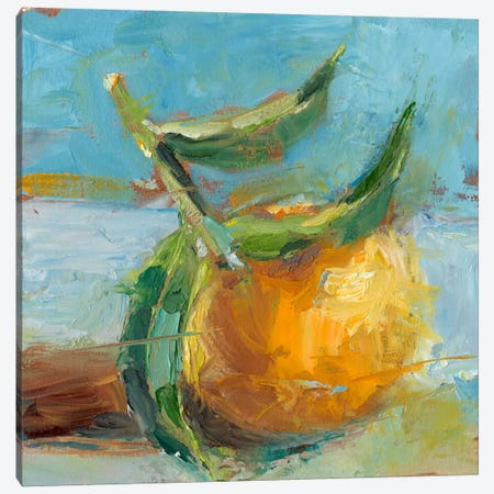 Impressionist Fruit Study III Canvas Print #EHA176} by Ethan Harper Canvas Art Print