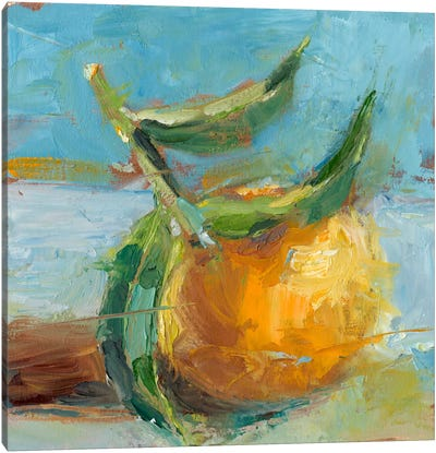 Impressionist Fruit Study III Canvas Art Print