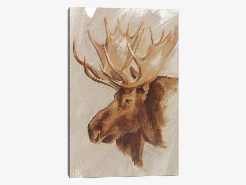 Western American Animal Study II by Ethan Harper 1-piece Canvas Art Print