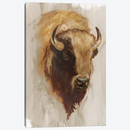 Western American Animal Study III Canvas Print #EHA188} by Ethan Harper Canvas Art Print