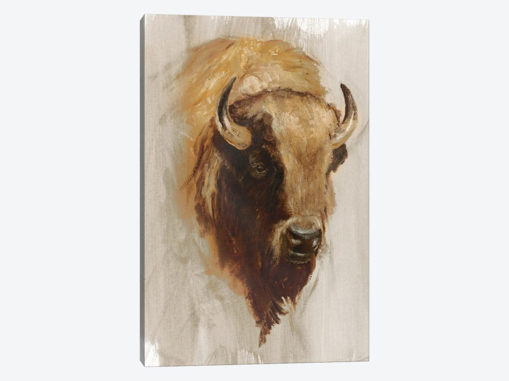 Western American Animal Study III by Ethan Harper 1-piece Canvas Wall Art