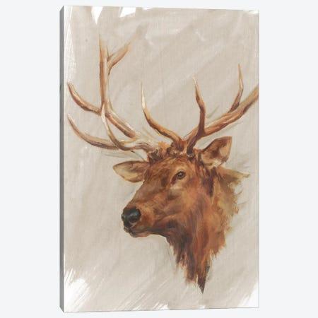 Western American Animal Study IV Canvas Print #EHA189} by Ethan Harper Art Print