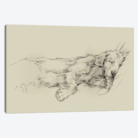 Dog Days III Canvas Print #EHA202} by Ethan Harper Canvas Art