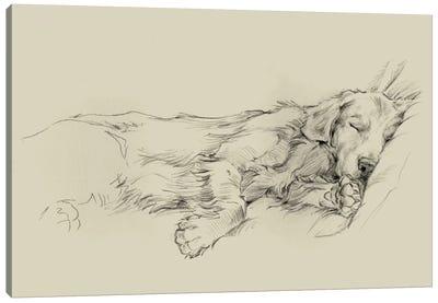 Dog Days III Canvas Art Print