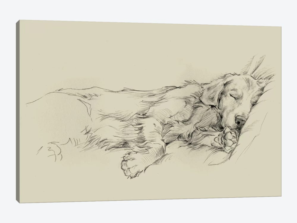 Dog Days III by Ethan Harper 1-piece Canvas Artwork