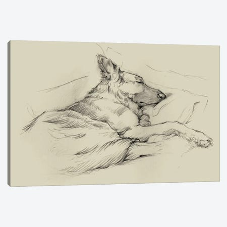 Dog Days IV Canvas Print #EHA203} by Ethan Harper Canvas Artwork
