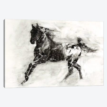 Rustic Appaloosa II Canvas Print #EHA218} by Ethan Harper Canvas Art Print