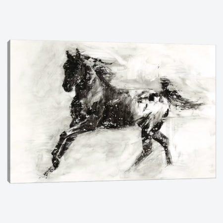 Rustic Appaloosa II Canvas Print #EHA218} by Ethan Harper Canvas Art Print