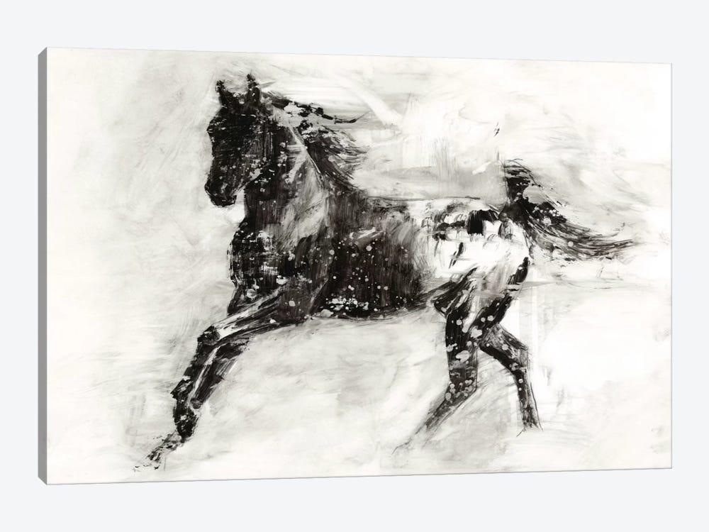 Rustic Appaloosa II by Ethan Harper 1-piece Canvas Art Print
