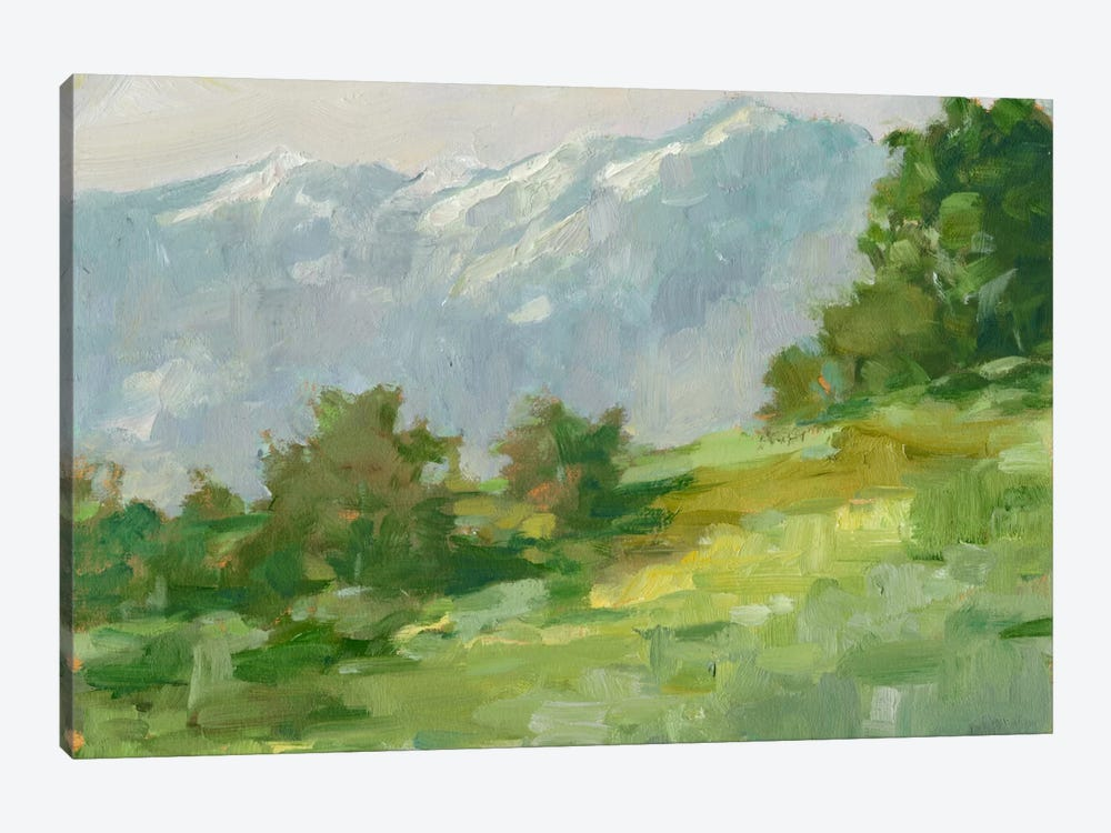 Mountain Backdrop I by Ethan Harper 1-piece Canvas Print