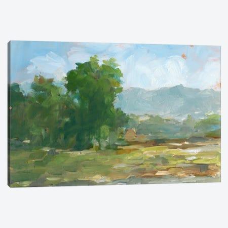Mountain Backdrop II Canvas Print #EHA246} by Ethan Harper Canvas Art Print