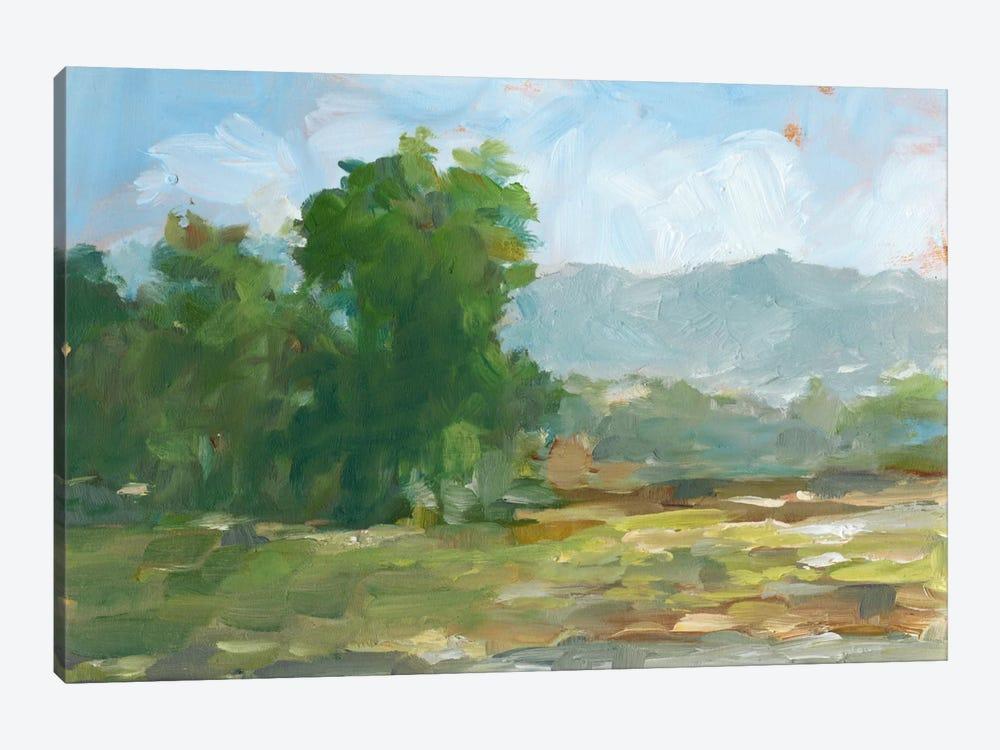 Mountain Backdrop II by Ethan Harper 1-piece Canvas Wall Art