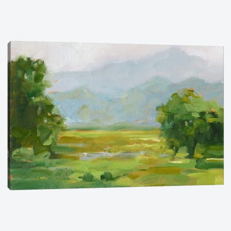 Mountain Backdrop III Canvas Print #EHA247} by Ethan Harper Canvas Art Print