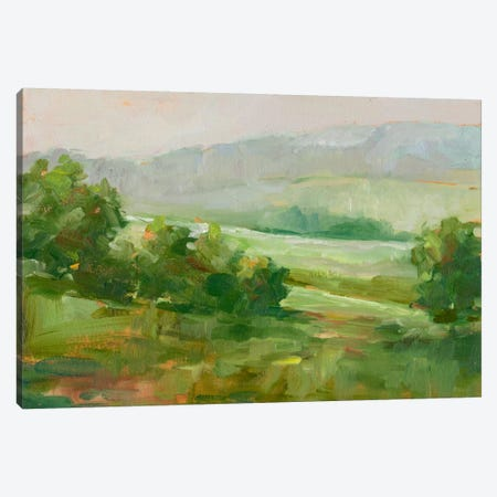 Mountain Backdrop IV Canvas Print #EHA248} by Ethan Harper Canvas Art