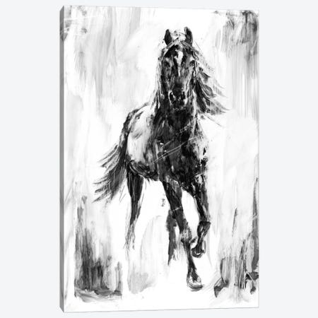 Rustic Stallion I Canvas Print #EHA251} by Ethan Harper Art Print