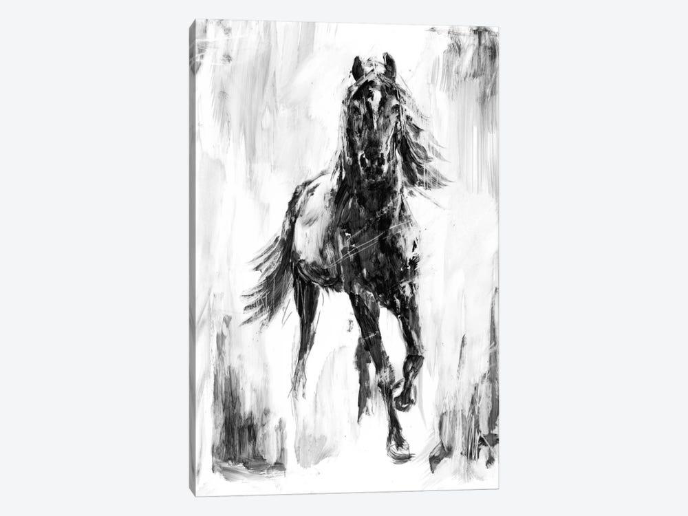 Rustic Stallion I by Ethan Harper 1-piece Canvas Artwork