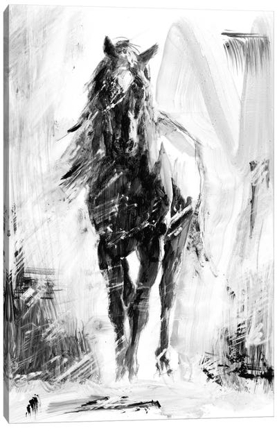 Rustic Stallion II Canvas Art Print