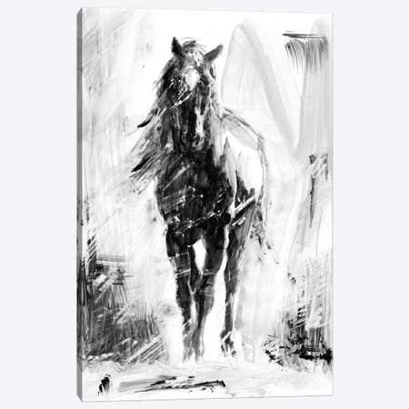 Rustic Stallion II Canvas Print #EHA252} by Ethan Harper Canvas Art Print