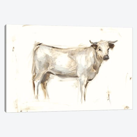 White Cattle I Canvas Print #EHA255} by Ethan Harper Canvas Artwork
