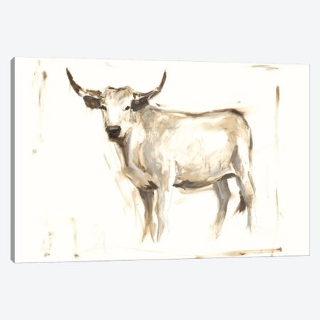 White Cattle II Canvas Print #EHA256} by Ethan Harper Canvas Art