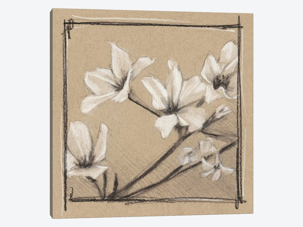 White Floral Study I by Ethan Harper 1-piece Canvas Wall Art