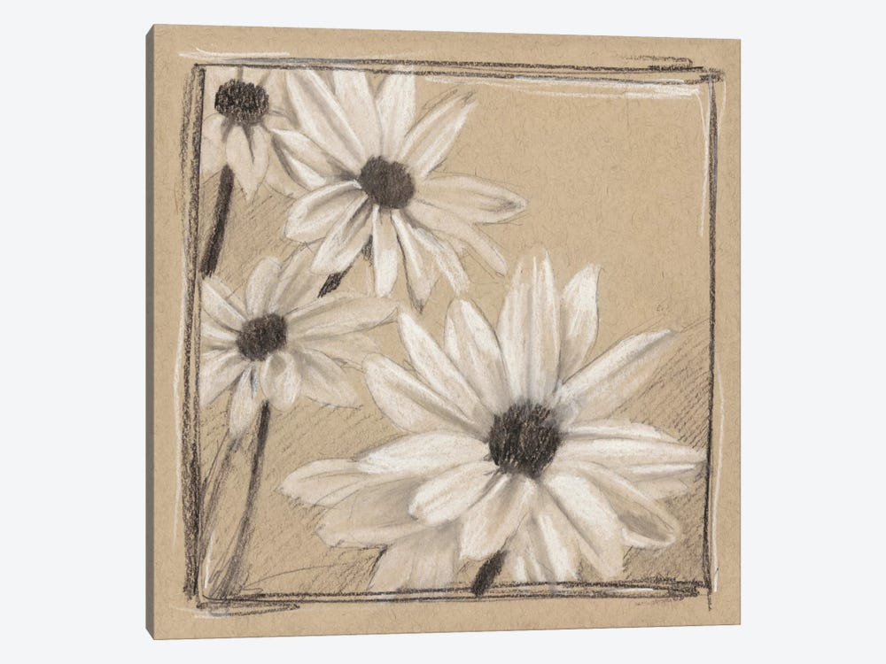 White Floral Study II by Ethan Harper 1-piece Canvas Art Print