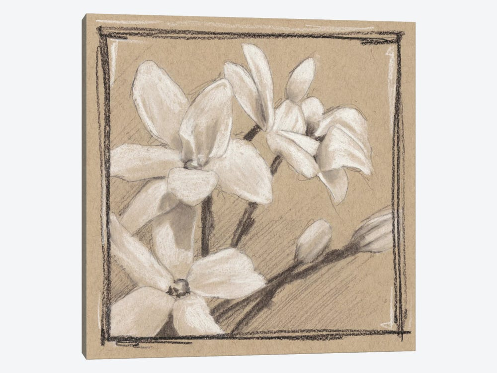 White Floral Study III by Ethan Harper 1-piece Canvas Art