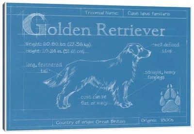 Blueprint Of A Golden Retriever Canvas Print #EHA25