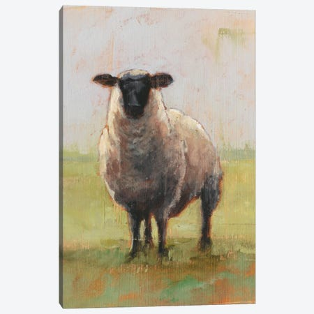 Away From The Flock I Canvas Print #EHA262} by Ethan Harper Canvas Wall Art