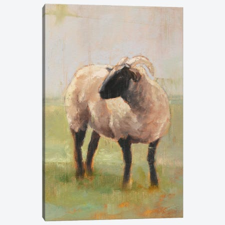Away From The Flock II Canvas Print #EHA263} by Ethan Harper Canvas Art